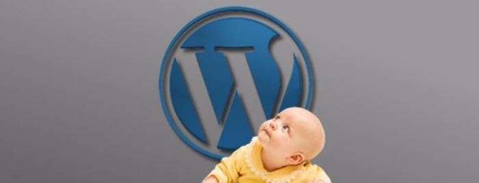 Moving Your Child Theme to a New WordPress Site